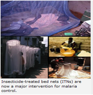 ITN Malaria